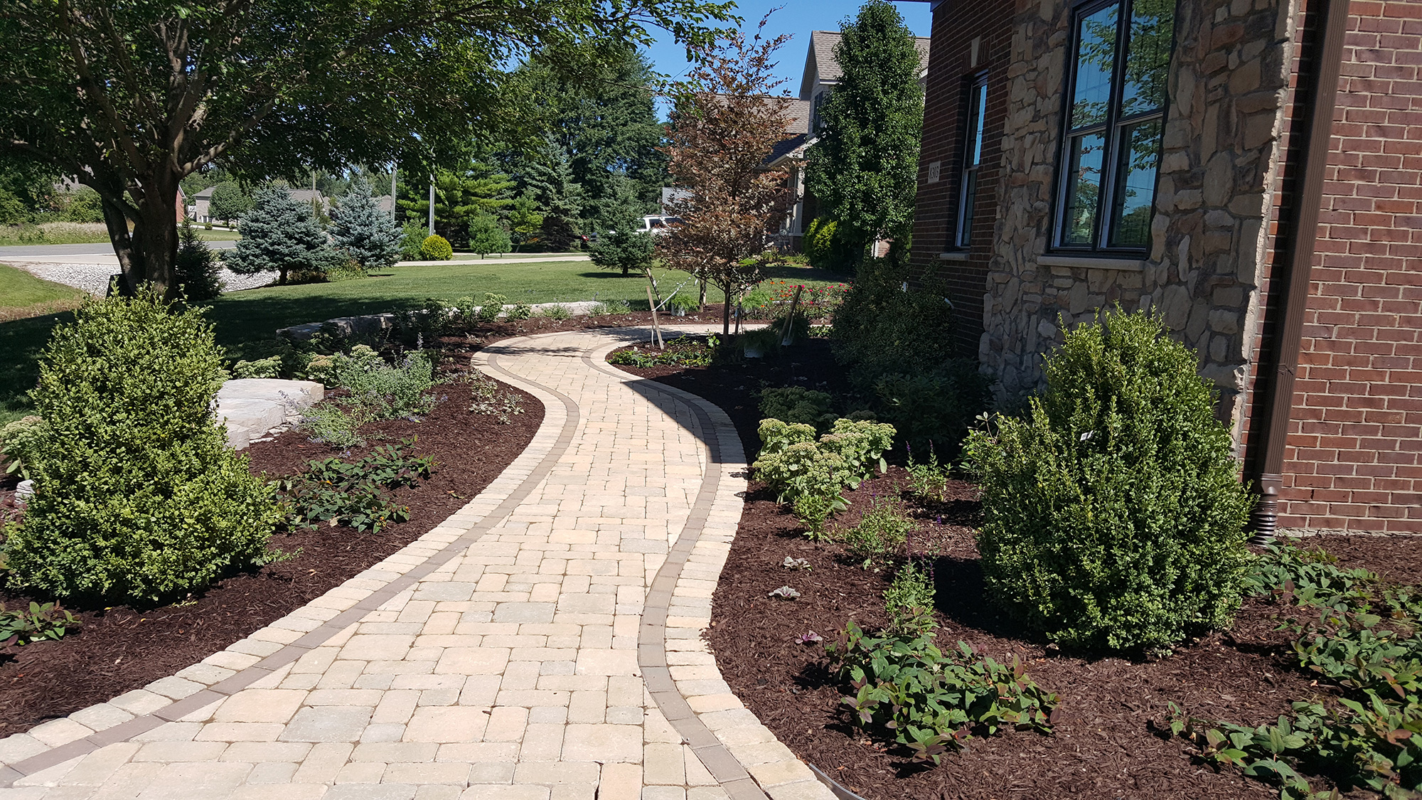 Salient Landscaping