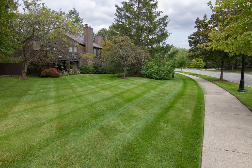 Salient Landscaping Residential Lawn Cutting